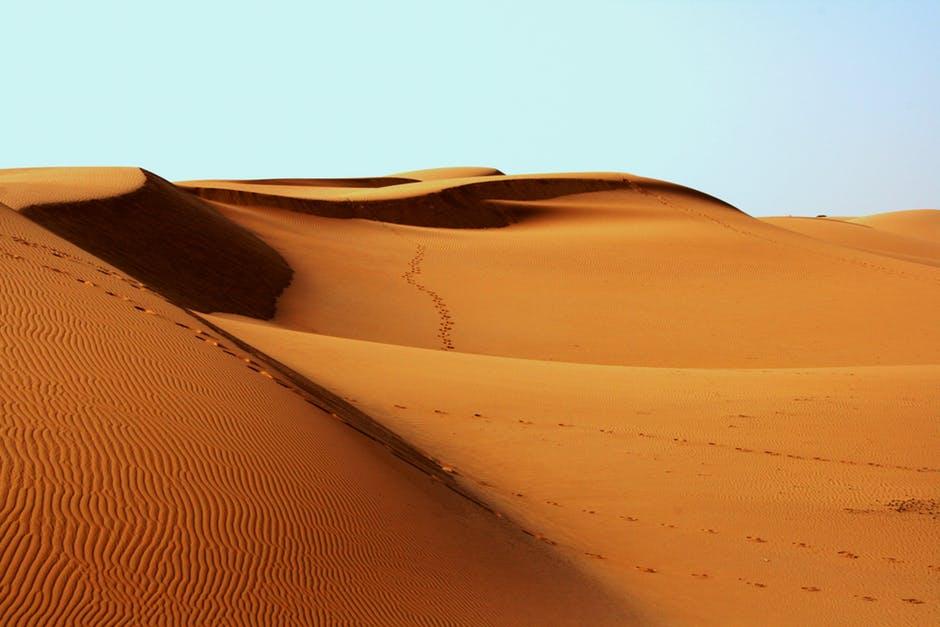 Sanddynor i Saharaöknen